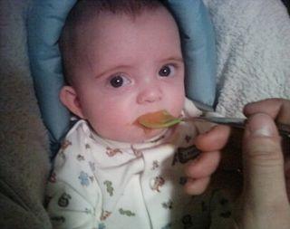 Brody eating sweet potatoes