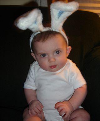 Braeden bunny 1