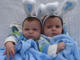 Bunny babies v4