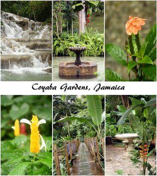 Coyaba gardens jamaica