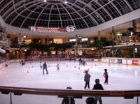 Edmonton_ice_rink